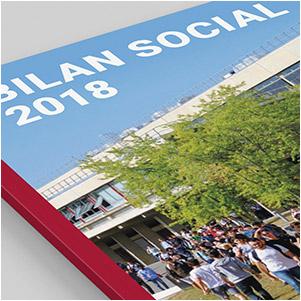 vignette, bilan social 2018, école centrale de lyon
