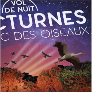vignette, nocturnes, 2019, parc des oiseaux
